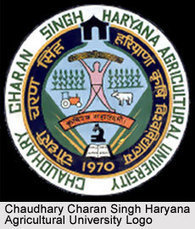 CCS Haryana Agricultural University Hisar Short Training Course 2013 | Edumate | Scoop.it