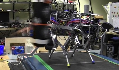 HyQ Quadruped Robot Is Back With Even More Tricks - IEEE Spectrum | Daily Magazine | Scoop.it