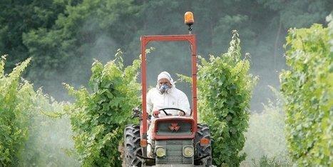 Charente : l'alerte des médecins face aux pesticides | Toxique, soyons vigilant ! | Scoop.it