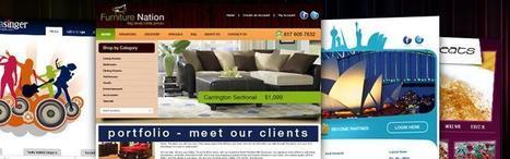 Best Software house in Pakistan - Best IT Solutions | Technology | Scoop.it