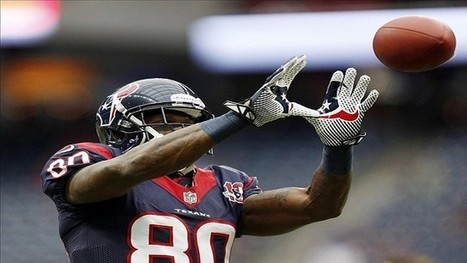 2013 Fantasy Football: WR Andre Johnson Should Be A Second Round Pick - Rant Sports | This Week in Gambling - Fantasy Sports | Scoop.it