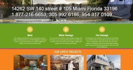 Mold Removal Services in South Florida | Enviropro | Scoop.it