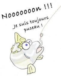 La surpêche ☺ Couleurs d'Aurore | My topics | Scoop.it