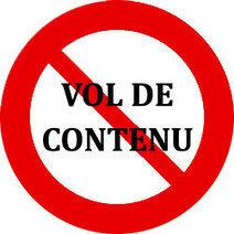 Lutter contre le vol de contenu et le contenu dupliqué   Référencement naturel - Astuces et conseils   Scoop.it