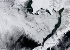 Bering Sea Sees Surprising Record Ice Cover | Sustainable Thinking | Scoop.it