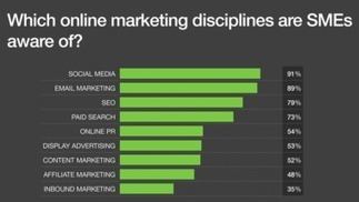 Less than half of SMEs actively investing in marketing their website - Internet - BizReport | Digital-News on Scoop.it today | Scoop.it