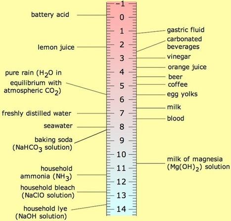 What makes things acid: The pH scale   Lab Rat, Scientific American Blog Network   Chemical & Engineering   Scoop.it