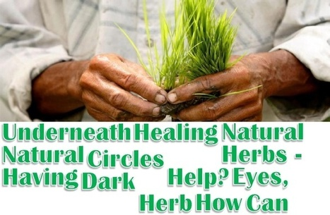 Natural Healing Herbs - Having Dark Circles Underneath Eyes, How Can Natural Herb Help?   Powerful Natural Herb Supplements for your Skin   Scoop.it