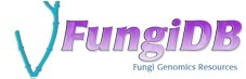 Database: FungiDB | Plant Pathogenomics | Scoop.it