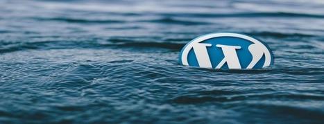 WordPress Theme Detector | 100% Free SEO Tools | Internet Marketing Discounts | Scoop.it