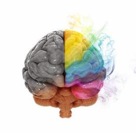 Coeduweg: leer es para la mente como ir al gimnasio | Medicina y Ciencia | Scoop.it