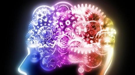 Le stress prolongé laisse des marques durables dans le cerveau   Enerlife.ch   Scoop.it