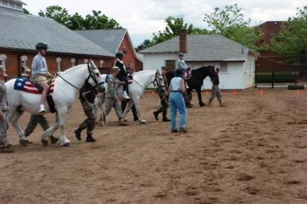 CPEAP | Equine Assisted Psychotherapy | Scoop.it
