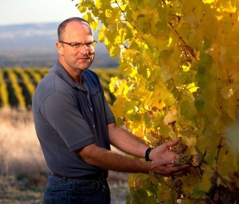 Chateau Ste Michelle believes #Riesling represents one of Washington State's strongest suits | Vitabella Wine Daily Gossip | Scoop.it