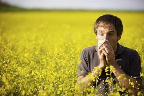 Afecciones respiratorias en primavera | Contenidos SCLAIC | Scoop.it