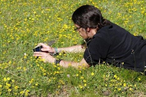 Sur le terrain, des milliers de Français font avancer la science de la biodiversité | Biodiversité | Scoop.it