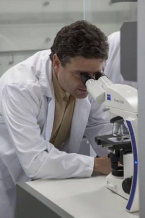 La mutación genética de pigmentación humana más habitual en los países mediterráneos incrementa la predisposición al cáncer de piel | La célula | Scoop.it