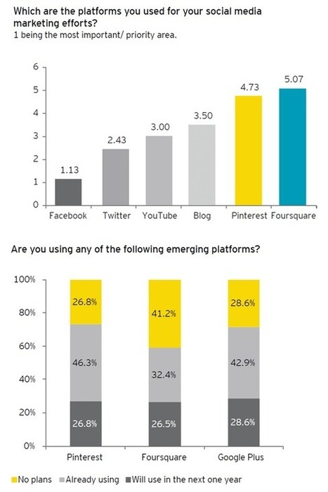 E&Y's Report on Social Media Marketing in India | e commerce | Scoop.it