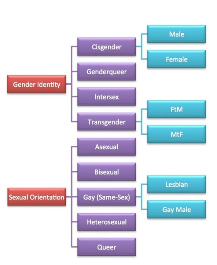 gender identity conflict essay