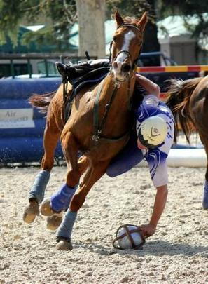 Mazamet. Un championnat de France de horse-ball | Cheval et sport | Scoop.it