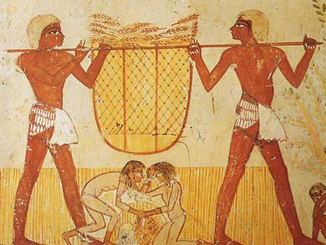 L'Egypte approvisionnée en blé pour au moins 6 mois | Égypt-actus | Scoop.it