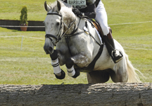 Riders Needed For Sports Psychology Survey  - Horse & Hound | The Psychology of Athletics | Scoop.it