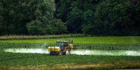 Tout ce qu'il faut savoir sur les pesticides - Le Monde | Alimentation21 | Scoop.it