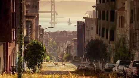 Une incroyable vidéo montre ce que la Terre deviendrait s'il n'y avait plus d'êtres humains | Un peu de tout et de rien ... | Scoop.it