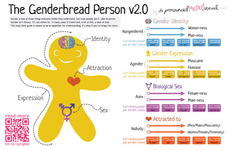 The Genderbread Person v2.0 | Gender and Education | Scoop.it