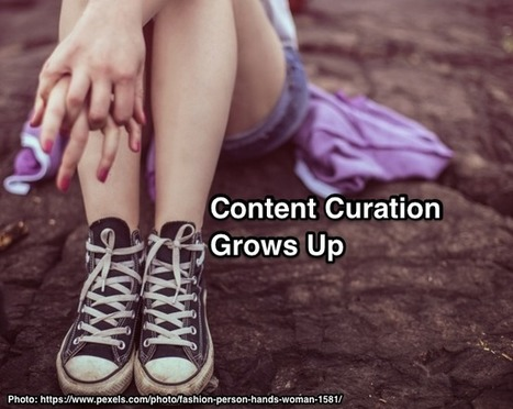 Content Curation Grows Up: What You Need To Know - Heidi Cohen | The Twinkie Awards | Scoop.it