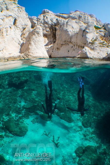Best of grand-angle SWAL13 de Dyron - Le Blog de la Plongée Bio   photo sous-marine   Scoop.it