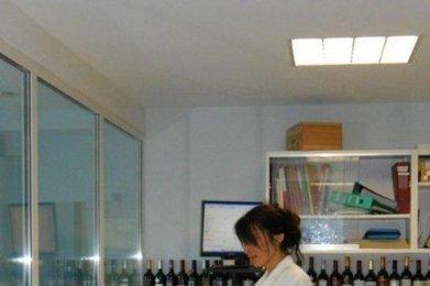 Viticulture : test réussi pour Univitis   Agriculture en Gironde   Scoop.it