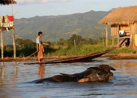 Guide de voyage Le Lac Inle Birmanie | Voyage Vietnam, Laos, Cambodge et en Birmanie | Scoop.it