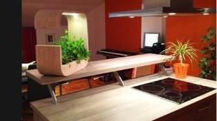 RTBF Info | 3 jeunes étudiants liégeois créent un jardin d'intérieur innovant | L'actualité de l'Université de Liège (ULg) | Scoop.it