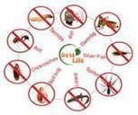 شركة مكافحة حشرات بالرياض | النيل للتسويق الاكتروني | Scoop.it