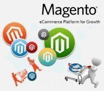 Magento Customization Lifts e-commerce Ventures to the Next Level   Web Development   Scoop.it