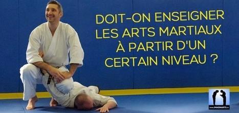 Doit-on enseigner les arts martiaux à partir d'un certain niveau ? | Imagin' Arts Tv | Scoop.it