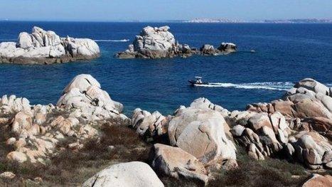 La réserve des Bouches de Bonifacio sous haute protection   En lien avec la Corse   Scoop.it