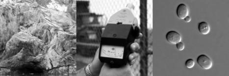 New England Forum for Acoustic Ecology | DESARTSONNANTS - CRÉATION SONORE ET ENVIRONNEMENT - ENVIRONMENTAL SOUND ART - PAYSAGES ET ECOLOGIE SONORE | Scoop.it