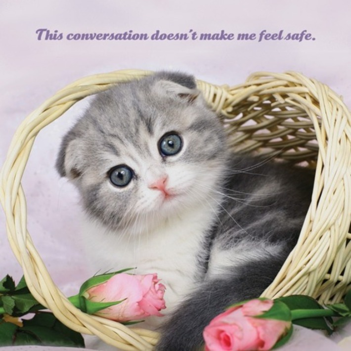 2015 Social Justice Kittens Calendar | Nerdy Needs | Scoop.it