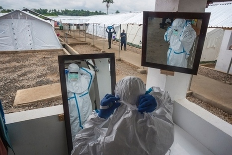 Ebola re-emerges in Sierra Leone   Media Cultures: Microbiology in the news   Scoop.it