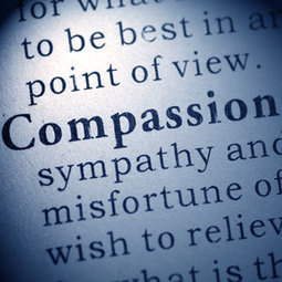 University of Queensland: Compassion Symposium | Empathy and Compassion | Scoop.it