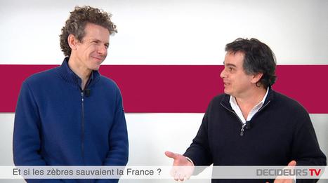 Gilles Babinet & Alexandre Jardin : Et si les zèbres sauvaient la France ? | intelligence collective | Scoop.it