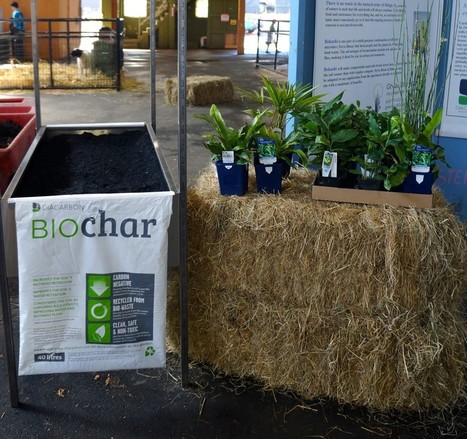 Diacarbon biochar at the PNE Fair | The Diacarbon Energy Blog | BioChar | Scoop.it