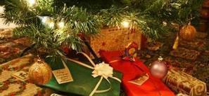 Bûche, sapin, cadeaux... d'où viennent ces traditions de Noël? - La Dépêche | Patrimoine Végétal et Biodiversité | Scoop.it