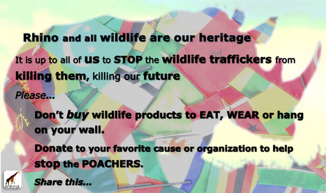 Don't buy 'em to eat, wear or hang on your wall - Wildlife Products | Wildlife Trafficking: Who Does it? All