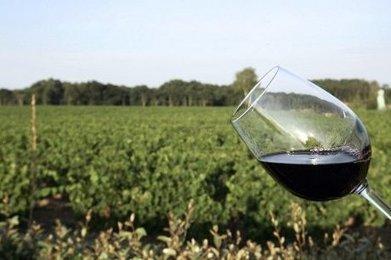 Bataille des noms de domaines .vin et .wine sur internet : l'Europe fait pression | Agriculture en Dordogne | Scoop.it