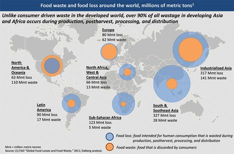 Reducing Food Loss & Waste to Feed the World's Nine Billion People in 2050 - Supply Chain 24/7 | Procurement; Negotiation; Purchasing; Supply Chain; | Scoop.it