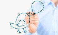 Tweeter automatiquement ses articles sous WordPress   CMS   Scoop.it
