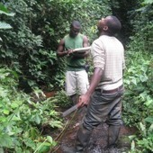 Demonstrating ecosystem service values in Africa|BirdLife Community | Financing Nature Conservation | Scoop.it
